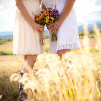 Dreamweaver and Jeanne's wedding